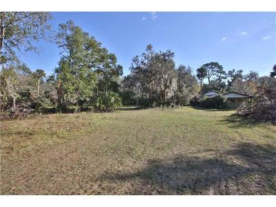 Port Orange Single Family Home For Sale: 6015 Spruce Creek Road
