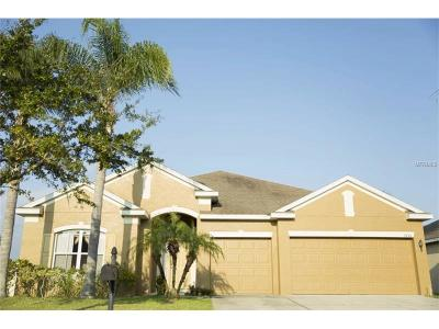 Saint Cloud Single Family Home For Sale: 3735 Moon Dancer Place