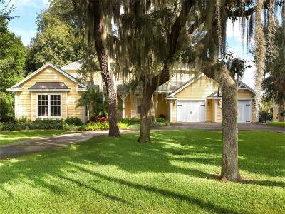 Mount Dora Single Family Home For Sale: 1771 Heim Road