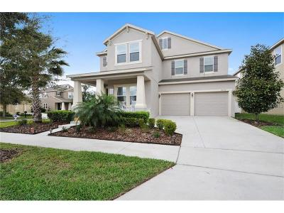 Orlando Single Family Home For Sale: 8076 Edgewood Forest Drive