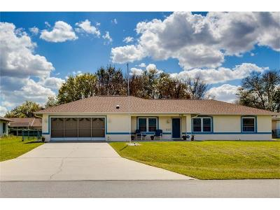 Lake County, Marion County Single Family Home For Sale: 4748 NW 32nd Street