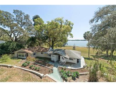 Mount Dora Single Family Home For Sale: 7684-A Lake Ola Drive