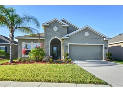 Kissimmee Single Family Home For Sale: 2567 Tanner Terrace