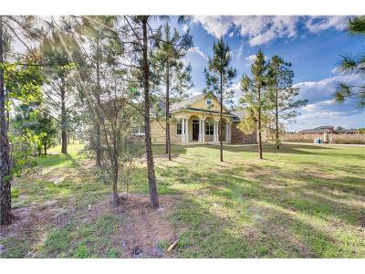 Polk City Single Family Home For Sale: 12525 Sweet Hill Road