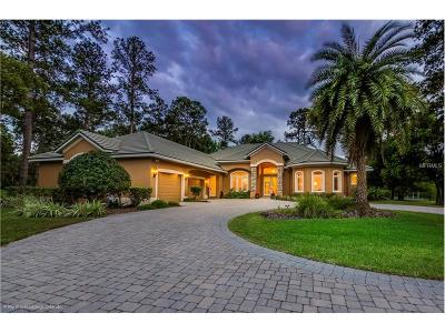 Sanford Single Family Home For Sale: 8507 Amber Ridge Court