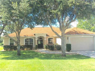 Clermont Single Family Home For Sale: 10601 Summit Lakes Lane