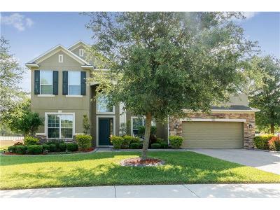 Apopka Single Family Home For Sale: 2533 Woodside Ridge Drive