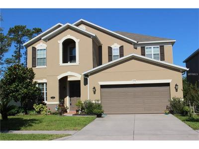 New Smyrna Beach Single Family Home For Sale: 546 Aeolian Drive