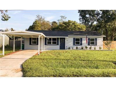 Mount Dora Single Family Home For Sale: 1325 Camp Avenue