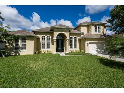 Orlando Single Family Home For Sale: 2238 Amberly Avenue