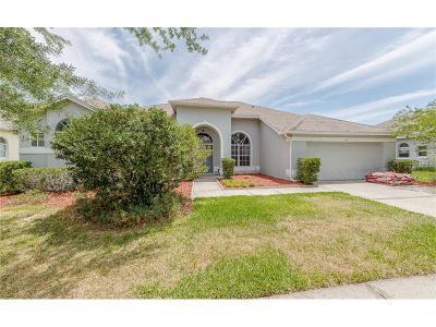 Orlando Single Family Home For Sale: 307 Pinewild Court