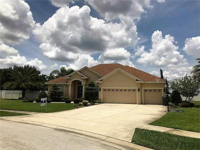 Winter Haven Single Family Home For Sale: 4437 Mandolin Boulevard