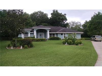 Mount Dora Single Family Home For Sale: 7237 Edmund Court