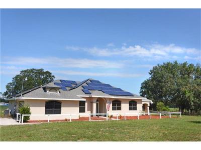 Saint Cloud Single Family Home For Sale: 312 Gerry Court