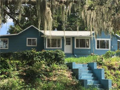 Mount Dora Single Family Home For Sale: 1335 Lakeshore Drive