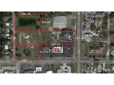 Kissimmee FL Residential Lots & Land For Sale: $1,390,000