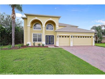 Oviedo Single Family Home For Sale: 3460 Hollow Oak Run