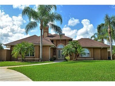 Orlando Single Family Home For Sale: 17332 Jonathan Lukas Court