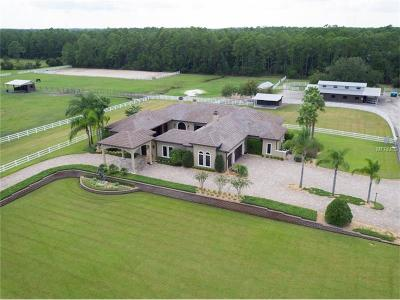New Smyrna Beach Single Family Home For Sale: 330 Spring Forest Drive