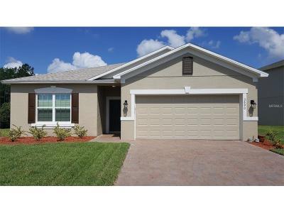 Port Orange Single Family Home For Sale: 3890 Dorsiere Avenue