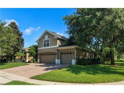 Orlando Single Family Home For Sale: 3667 King George Drive