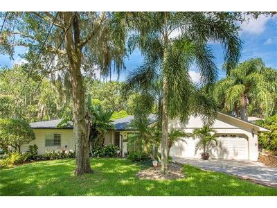 Orlando Single Family Home For Sale: 2900 Westchester Avenue