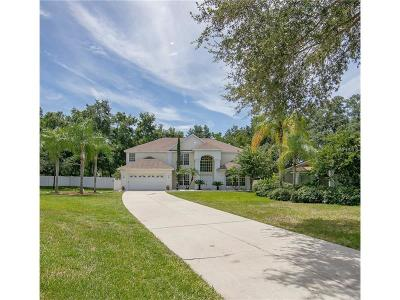 Gotha Single Family Home For Sale: 10454 Windermere Chase Boulevard