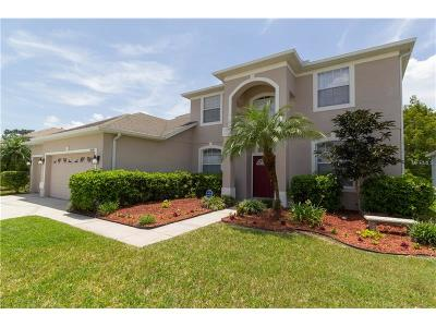Orlando Single Family Home For Sale: 2030 Sunset Terrace Drive