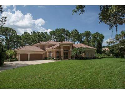 Orlando Single Family Home For Sale: 10349 Cypress Isle Court