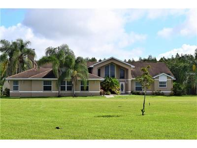 Kissimmee Single Family Home For Sale: 4121 Twilight Trail