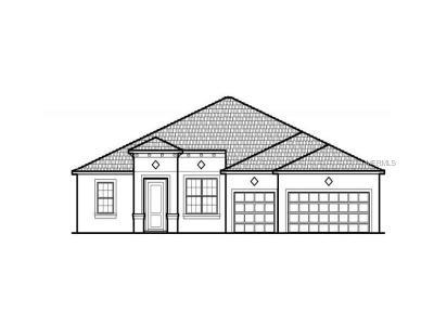 Ocoee Single Family Home For Sale: 1056 Dusty Pine Drive Loop