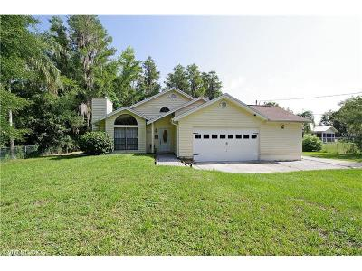 Winter Garden Single Family Home For Sale: 17041 Arrowhead Boulevard
