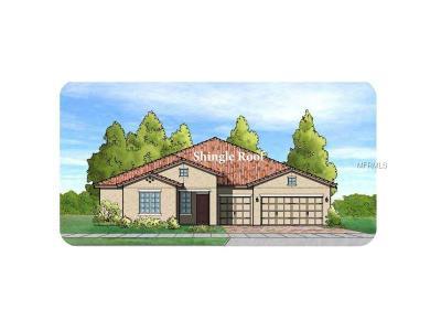 Ocoee Single Family Home For Sale: 1062 Dusty Pine Drive Loop