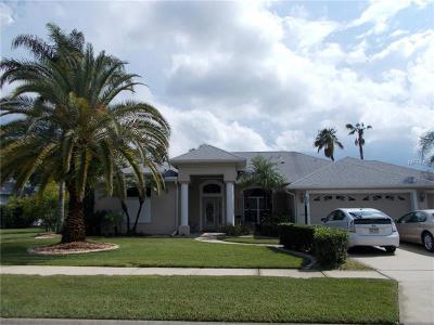 Port Orange Single Family Home For Sale: 6428 Renaissance Drive