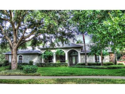 Mount Dora Single Family Home For Sale: 1074 Ceasars Court