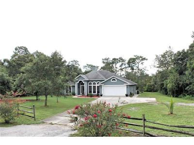 Deland Single Family Home For Sale: 710 Gemstone Trail