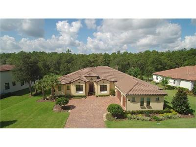 Lake Mary Single Family Home For Sale: 2237 Soaring Eagle Place