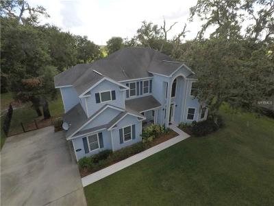 Saint Cloud Single Family Home For Sale: 1405 Hidden Oaks Bend
