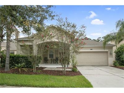 Winter Garden Single Family Home For Sale: 2321 Black Lake Boulevard