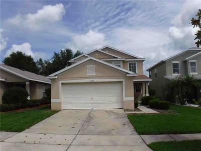 Riverview Single Family Home For Sale: 11247 Cocoa Beach Drive
