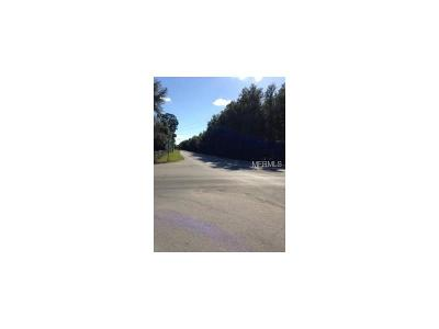 Lake County, Seminole County, Volusia County Residential Lots & Land For Sale: Grays Airport Rd.