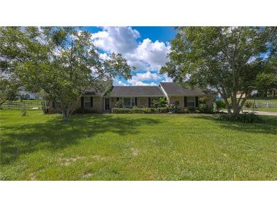 Montverde Single Family Home For Sale: 15428 Thoroughbred Lane