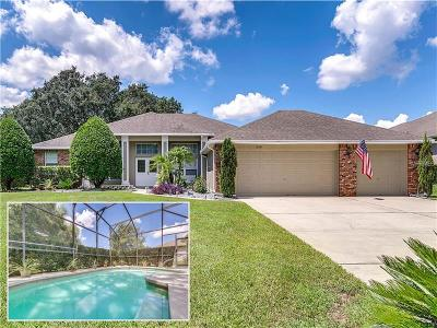 Apopka Single Family Home For Sale: 240 Sutherland Court