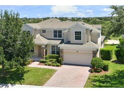 Clermont Single Family Home For Sale: 1203 Legendary Boulevard