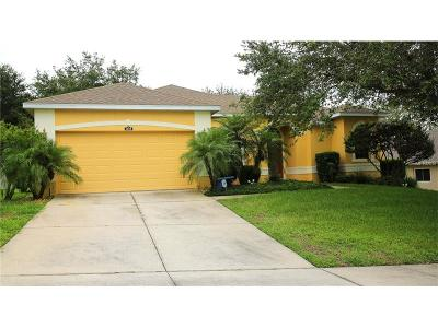 Clermont Single Family Home For Sale: 3858 Fallscrest Circle