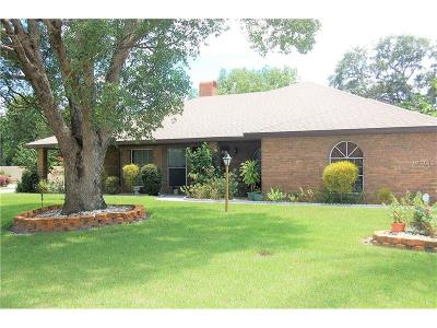 Debary Single Family Home For Sale: 645 Summerhaven Drive