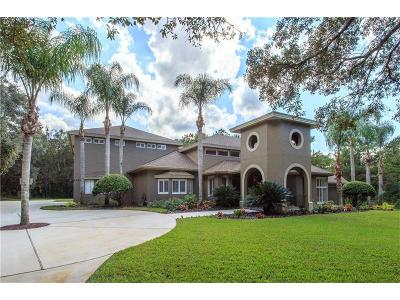 Lake Mary Single Family Home For Sale: 1741 Fountainhead Drive