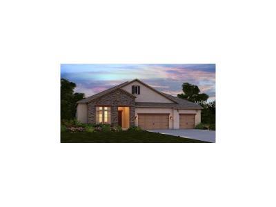 Bradenton Single Family Home For Sale: 13027 Utopia Loop