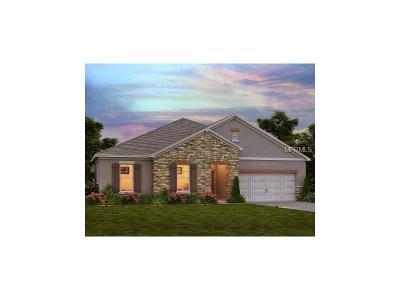 Bradenton Single Family Home For Sale: 13143 Bliss Loop
