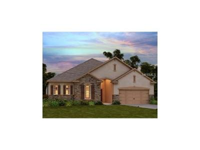 Bradenton Single Family Home For Sale: 13019 Utopia Loop